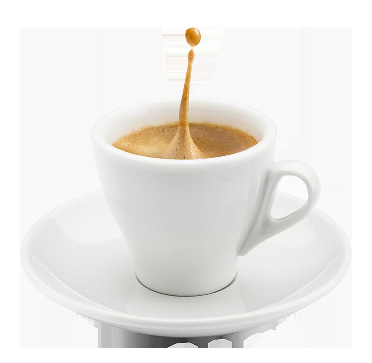 Un thé chez Dreamcom?